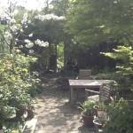 A little Garden in Hampstead Garden Suburb