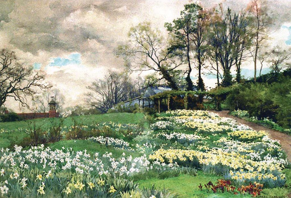 Ellen Willmott's garden